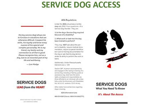 service_dog_access_widget